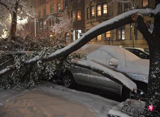加州大火未完纽约突降大雪 致全城瘫痪多人死亡