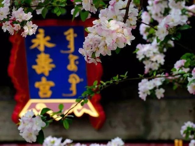 故宫还有35%未开放的神秘地,奢华程度超出现代人想象
