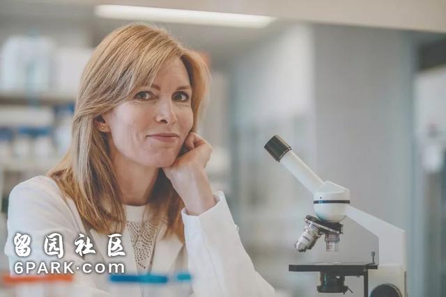 """悉尼有个""""大脑银行"""",科学家每天的工作就是切!人!脑!"""